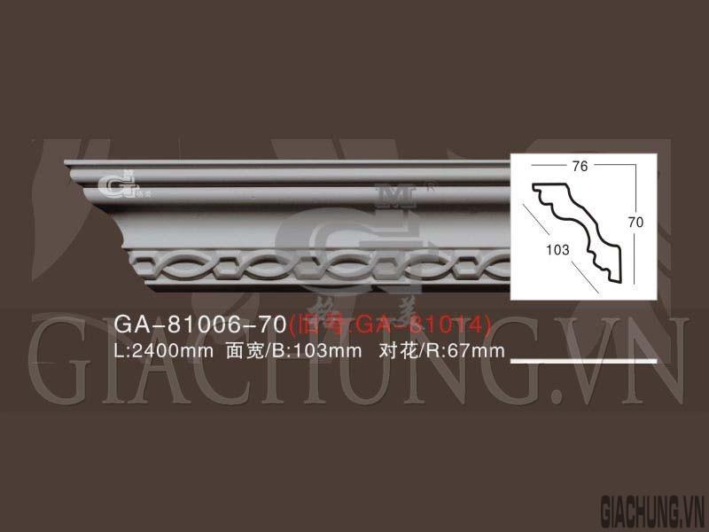 GA-81006-70