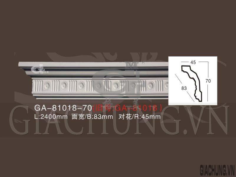GA-81018-70