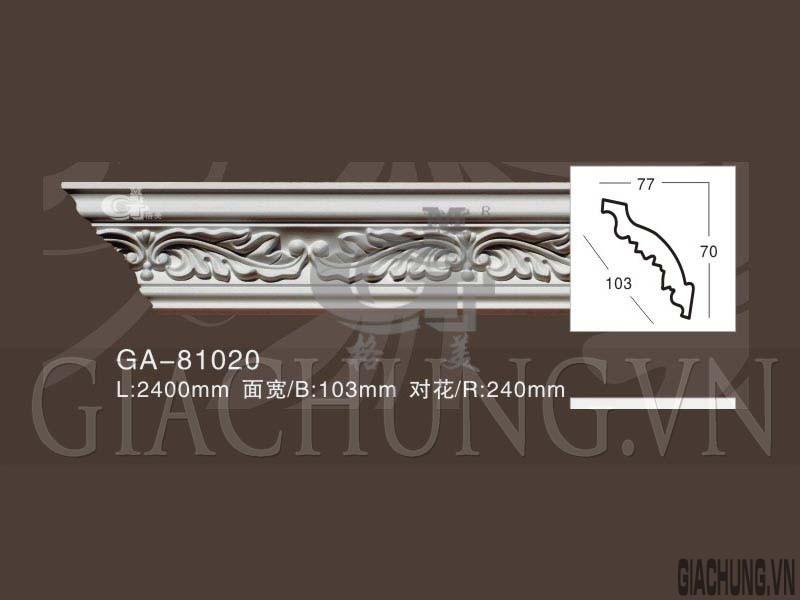 GA-81020