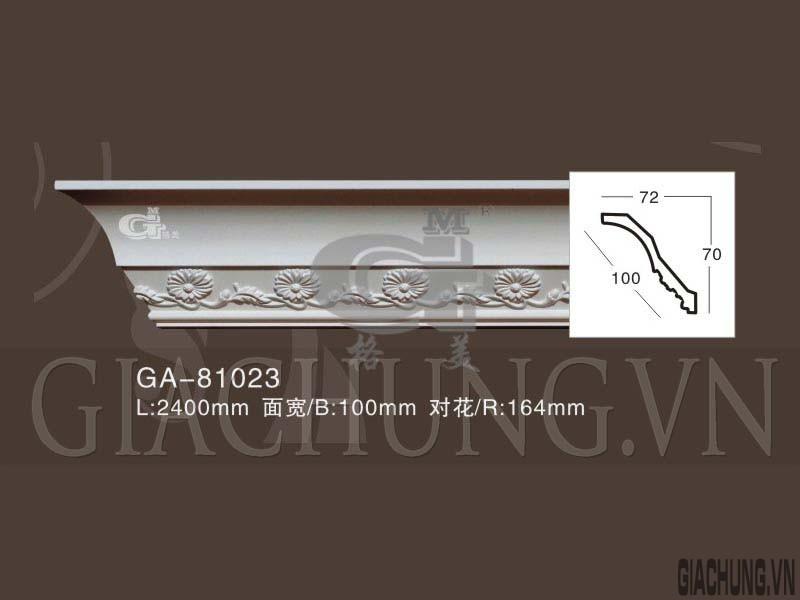 GA-81023