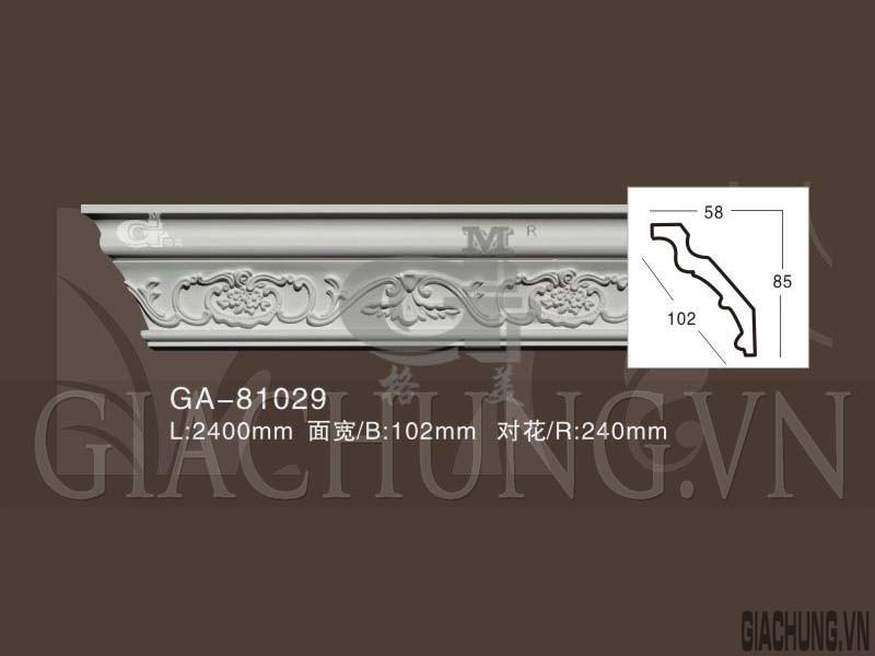 GA-81029