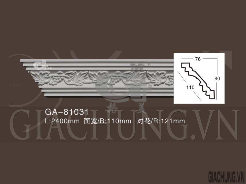 GA-81031