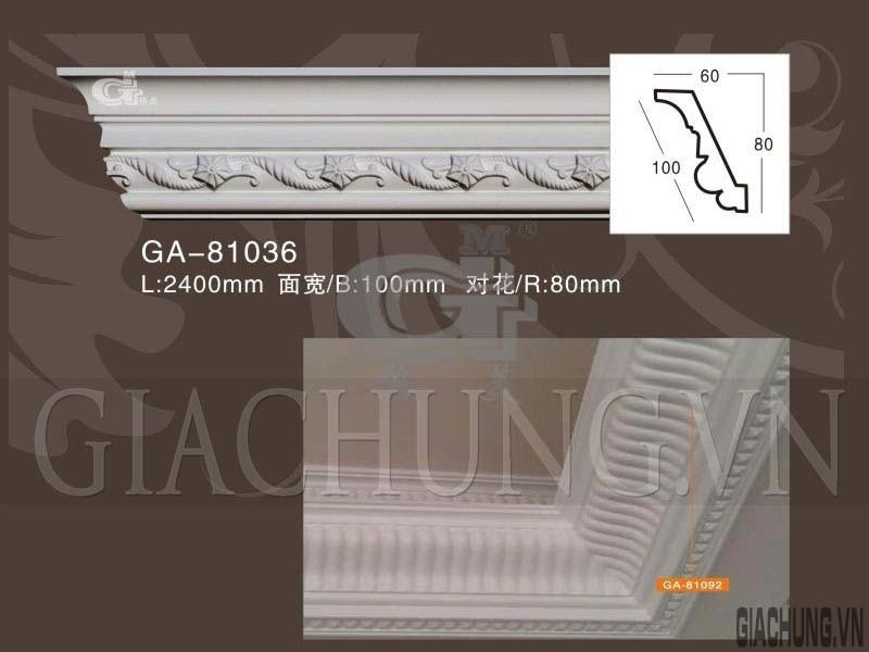 GA-81036