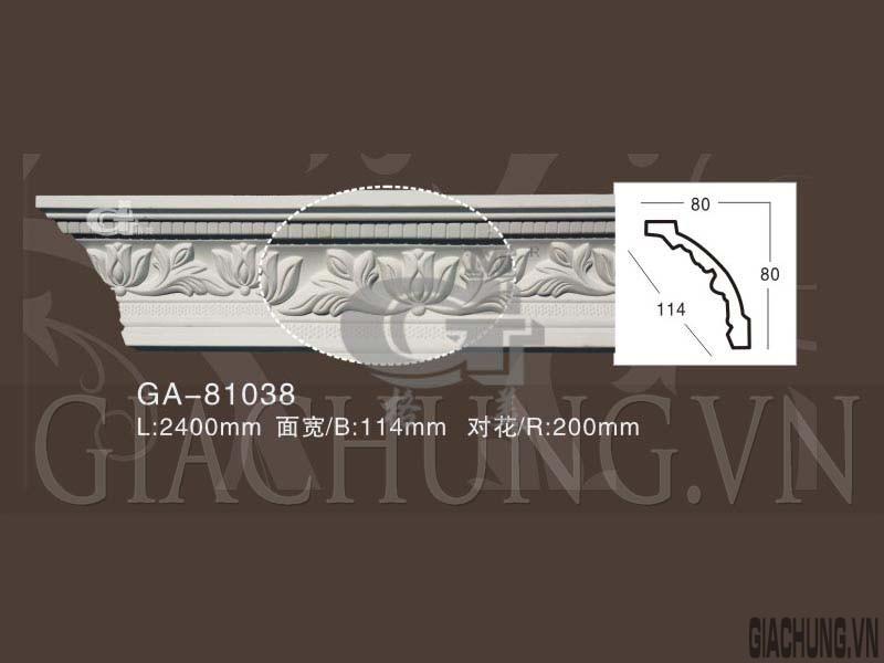 GA-81038