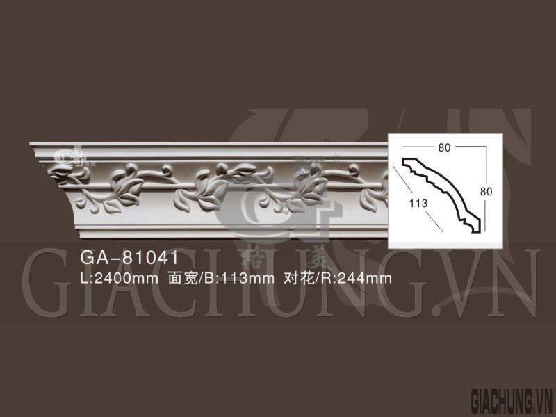 GA-81041