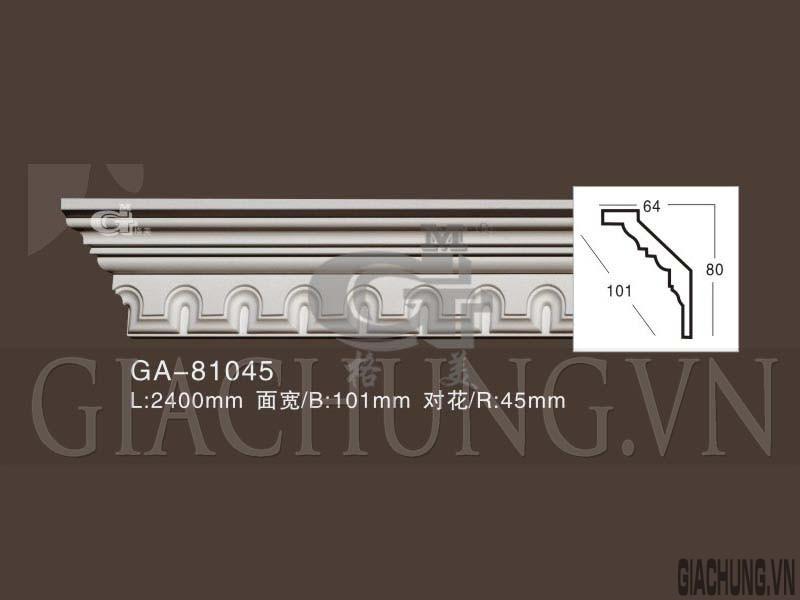 GA-81045