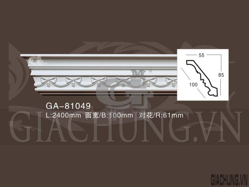 GA-81049