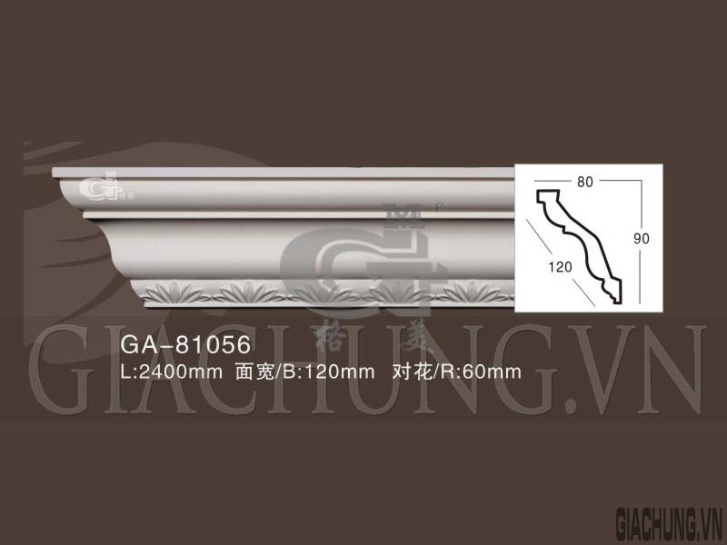 GA-81056