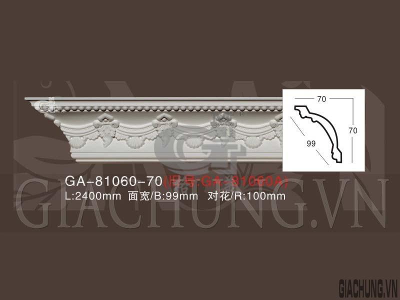 GA-81060-70