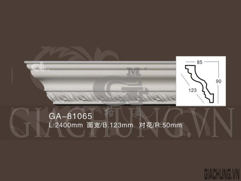 GA-81065