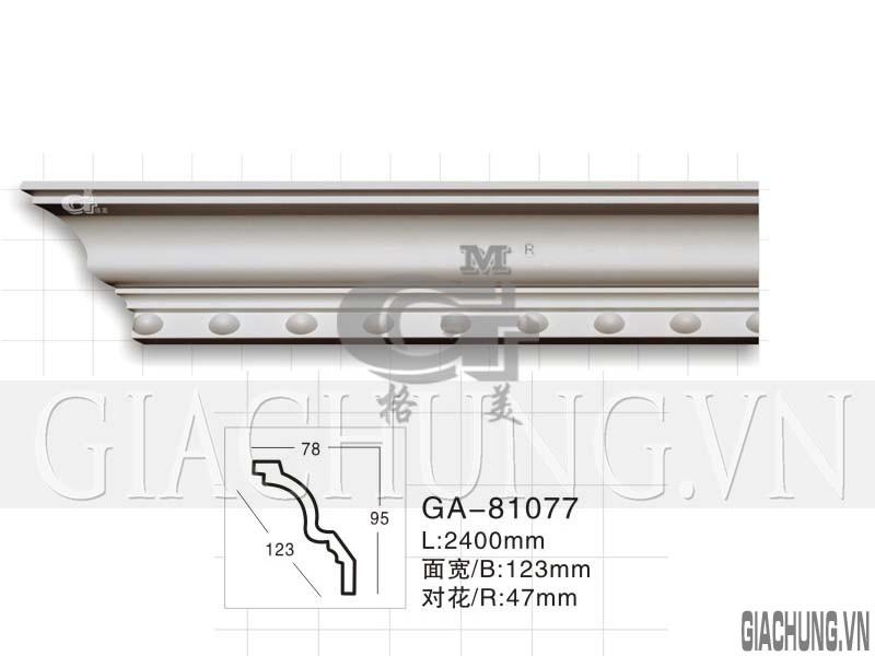 GA-81077