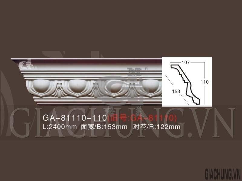 GA-81110-110