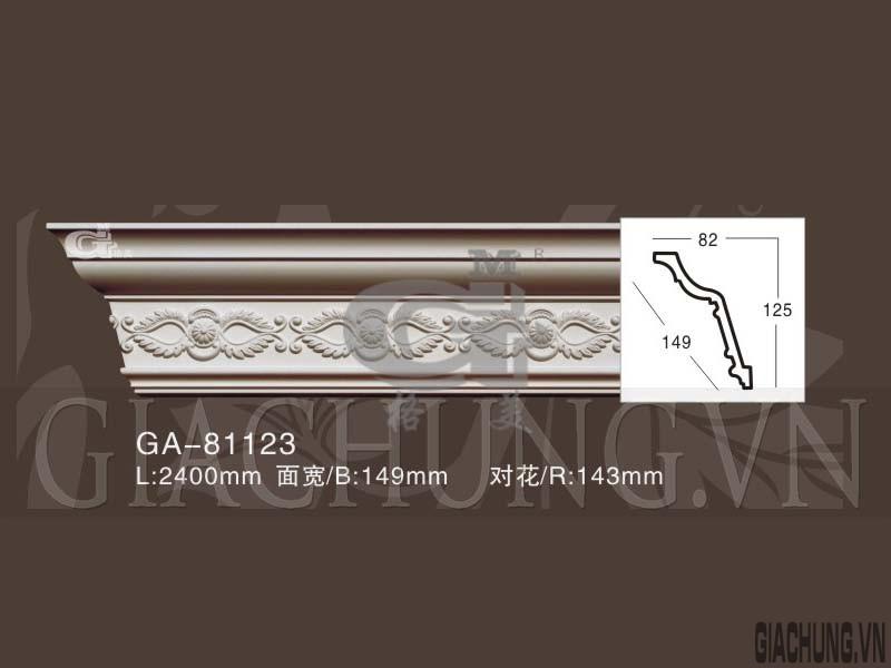 GA-81123