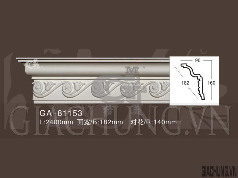 GA-81153