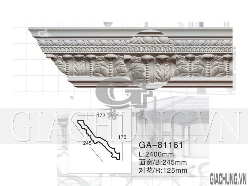 GA-81161