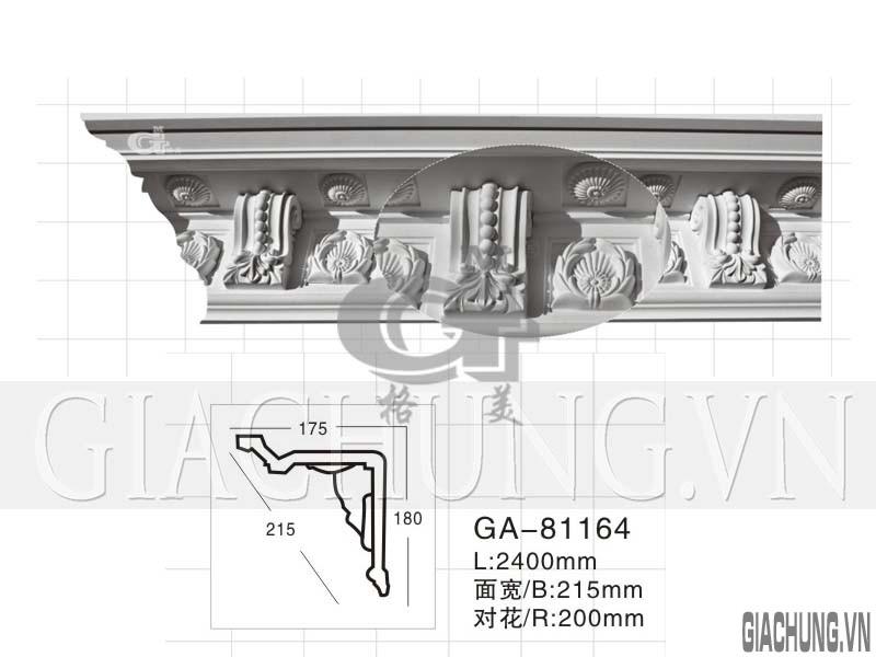 GA-81164