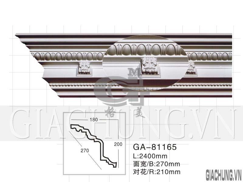 GA-81165