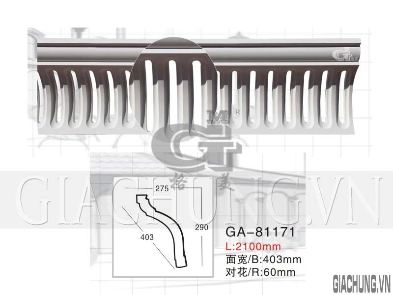 GA-81171