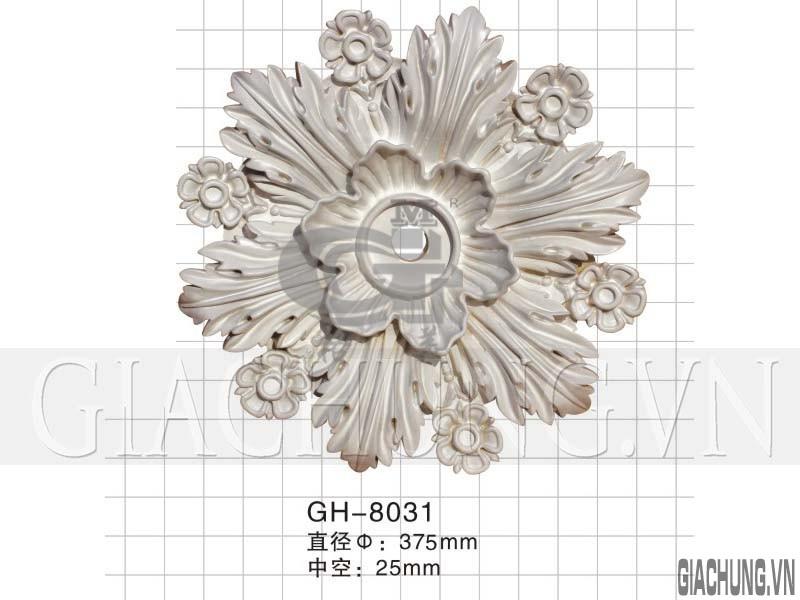 GH-8031_i8il